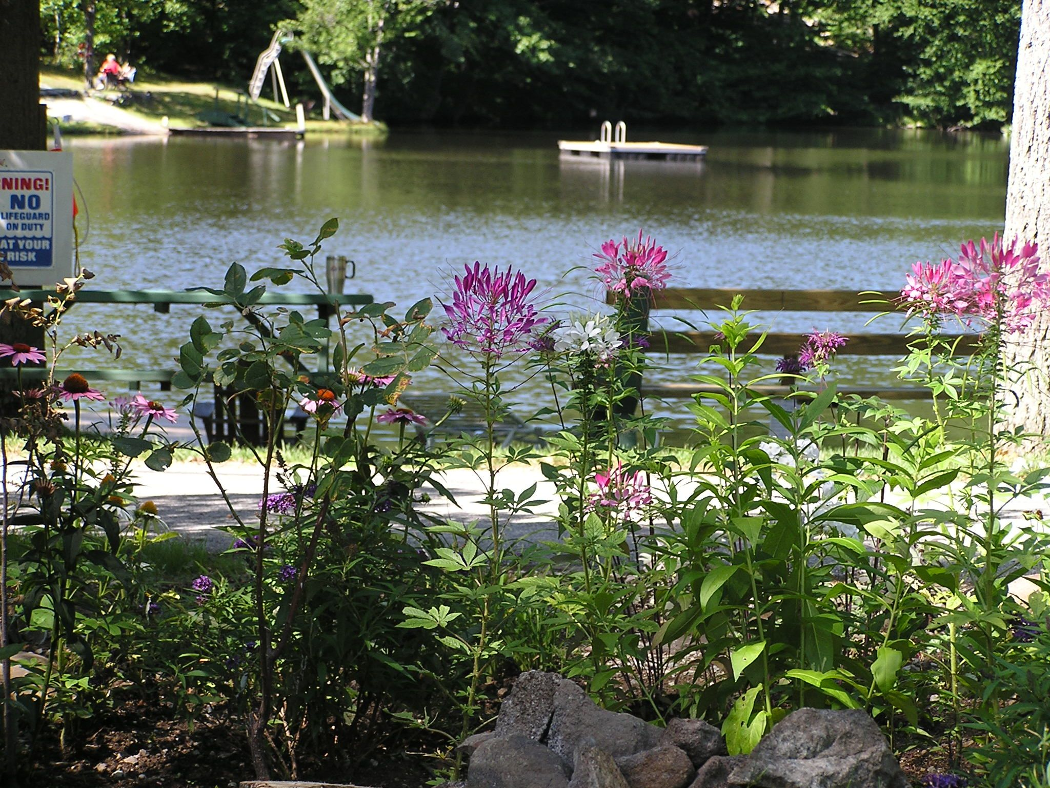 Flower Garden Lake View