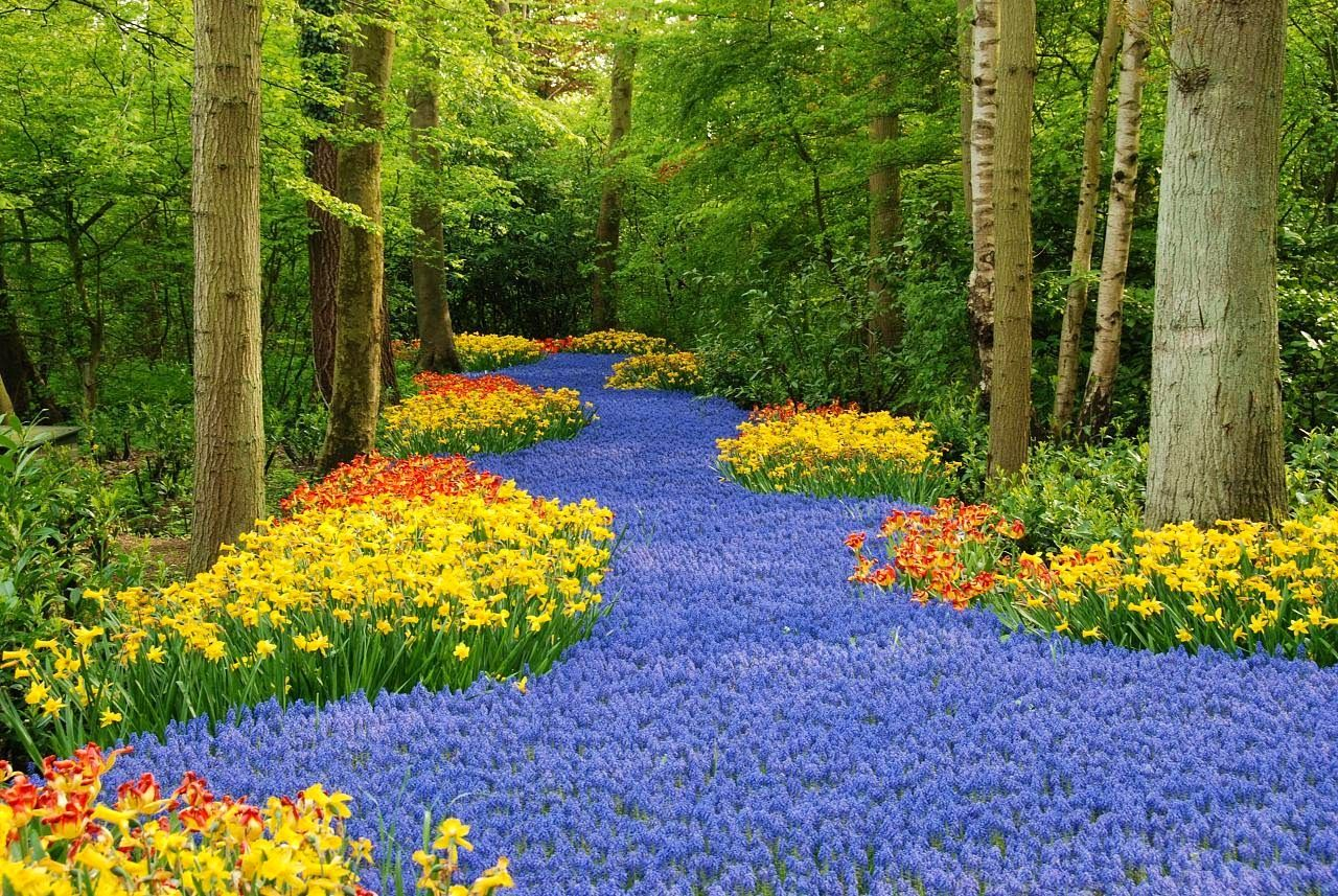 Jardin mas hermoso del mundo 4 paisajes que me gustan - Paisajes y jardines ...