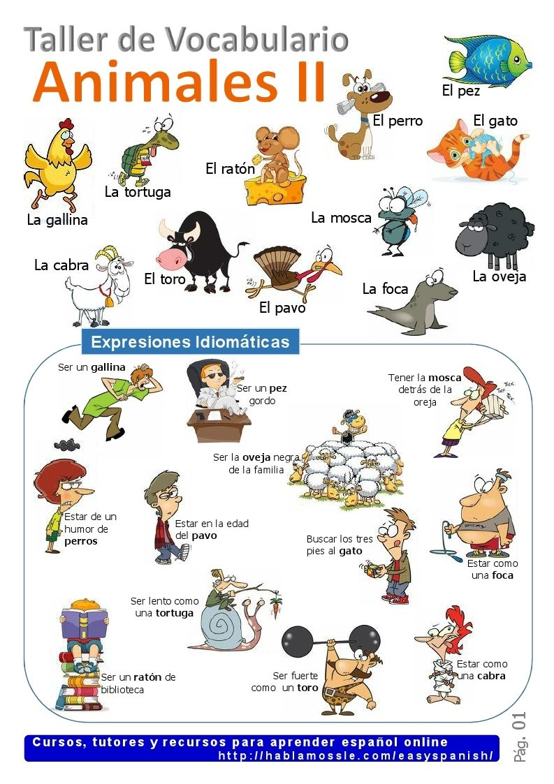 Learning Spanish Vocabulary Animals And Idioms Learning Spanish Learning Spanish Vocabulary Spanish Vocabulary
