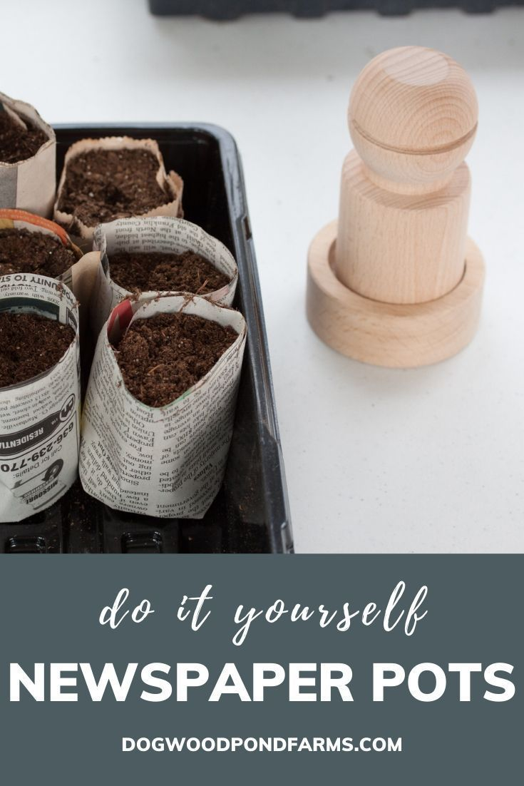 Save money with these do it yourself seed starting containers for the vegetable garden made from recycled materials DIY with things from around the house you would otherw...