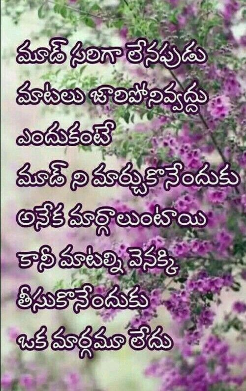 Pin By Lovely Dp On Telugu Quotes Lesson Quotes Meant To Be Quotes Love Meaning Quotes