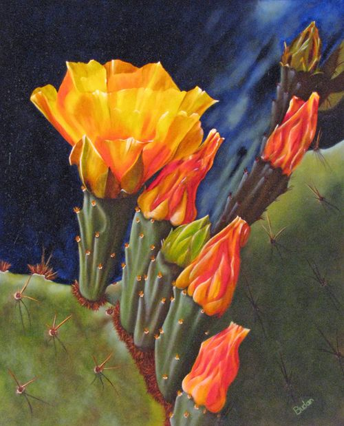 Cactus Beauty by Karen Budan