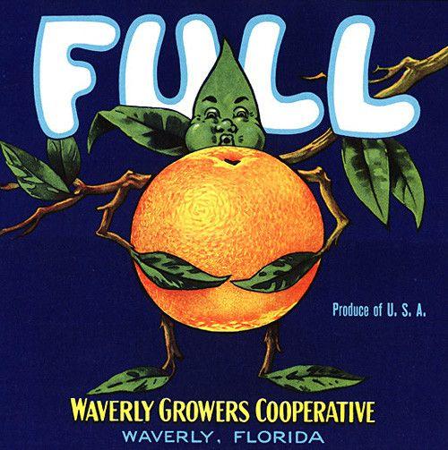 Winter Park Florida Pekin Brand Duck Orange Citrus Fruit Crate Label Print