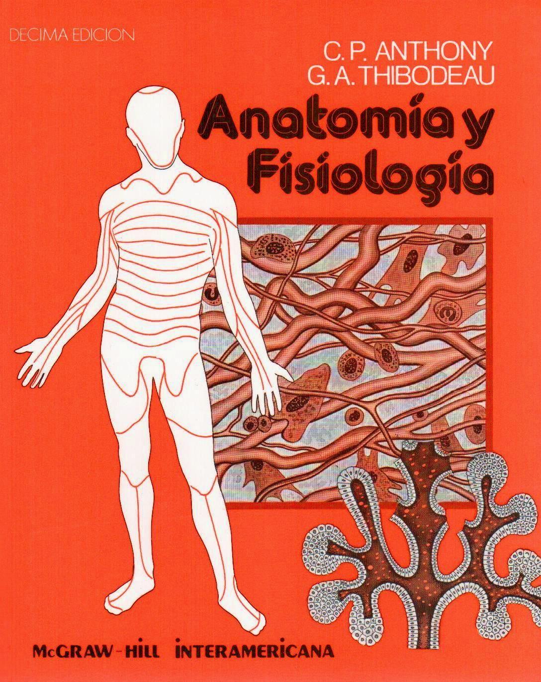 Anatomia y Fisiologia,El cuerpo como un todo,Sosten y movimiento ...