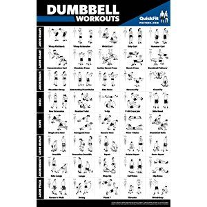 dumbbell workout exercise poster  laminated  free weight