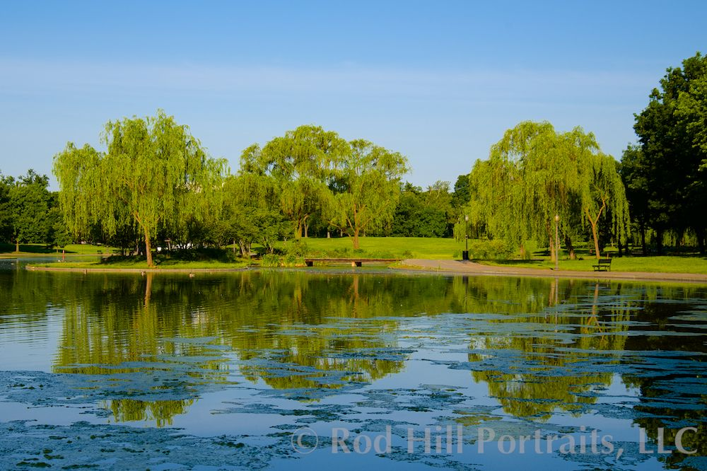 Reflections: Photos of the pond near the WW II Memorial, Washington, DC.