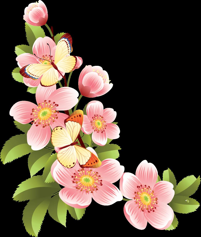 Картинки цветы клипарт на прозрачном фоне