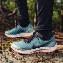Nike Zoom Pegasus 36 Trail Gore-tex Trail-Laufschuh für ...