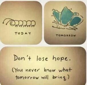 Don't lose hope!
