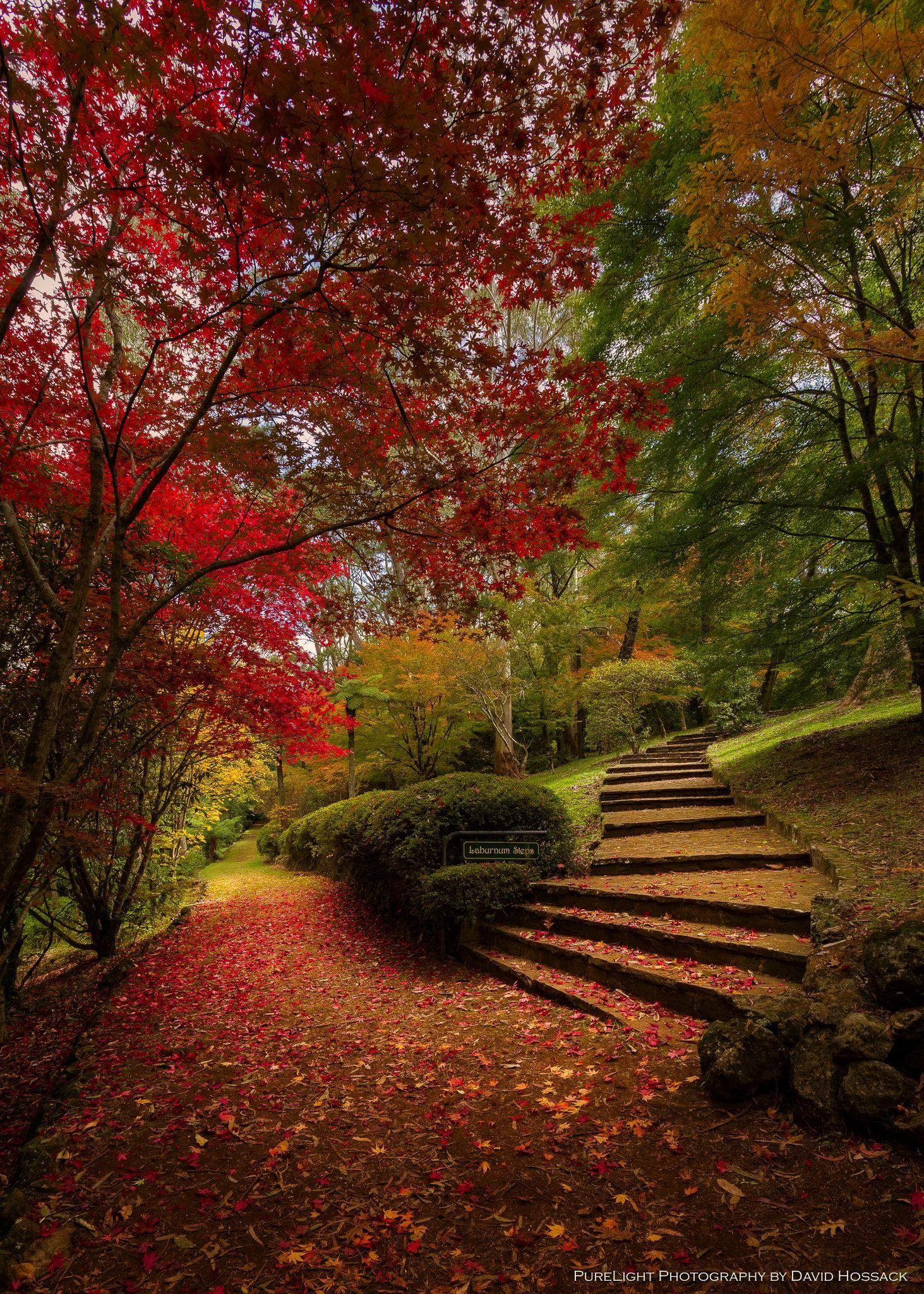 Pin by Carla Atkinson on Pretty fall stuff Scenery