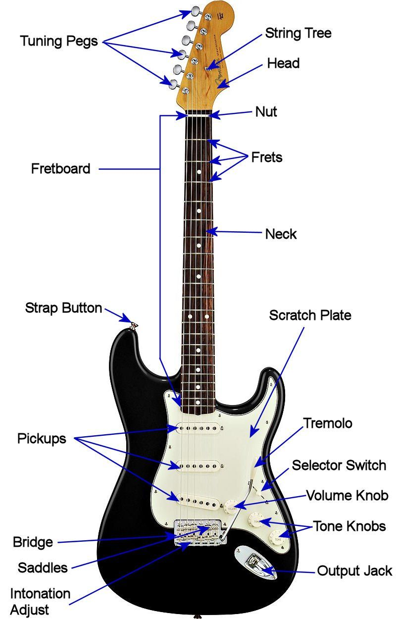Electric Guitar Anatomy Electric Guitar Pinterest Guitars And