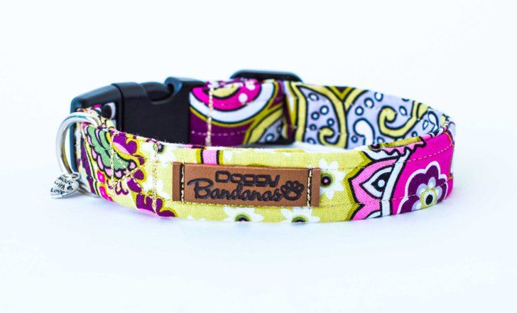 Pin for Later: 14 Chic Dog Collars For the Most Fashion-Forward Pooches  Funky Dog Collar ($16 and up)