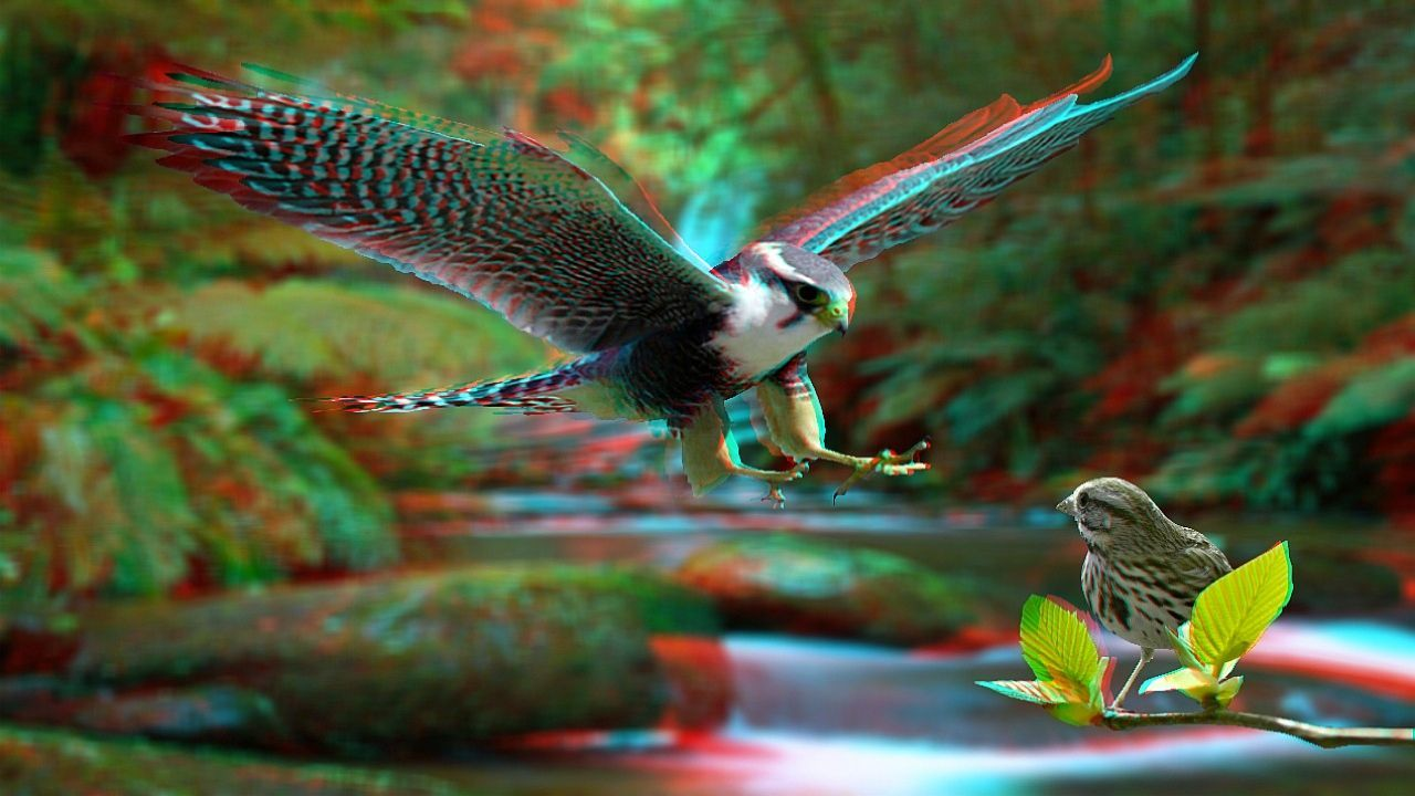 3d anaglyph foto pradator hd wallpapers 3d pictures pinterest hd wallpaper 3d and 3d - Foto walpepeer ...