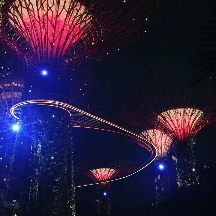 super tree grove garden by the bay singapore kenzohsieh gardenbythebay garden marinabay - Garden By The Bay Fireworks