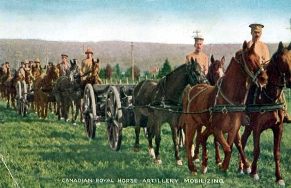 Canadian Royal Horse Artillery