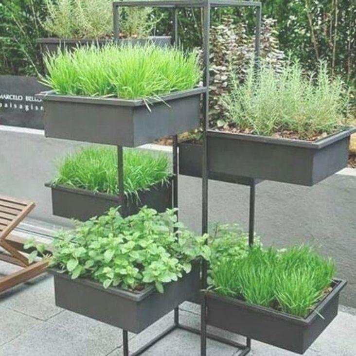 5 Vertical Vegetable Garden Ideas For Beginners: Small Vegetables Garden For Beginners_6