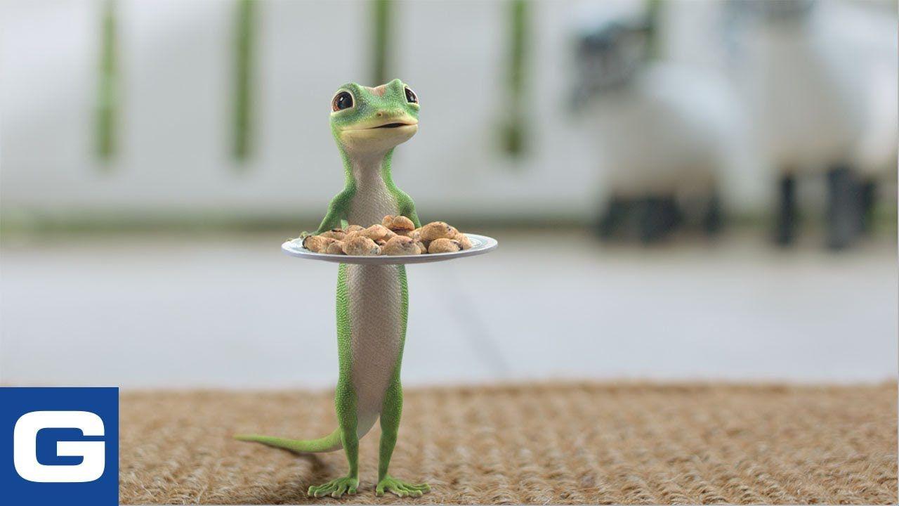 The Gecko Welcomes New Neighbors Geico Insurance Youtube 2020