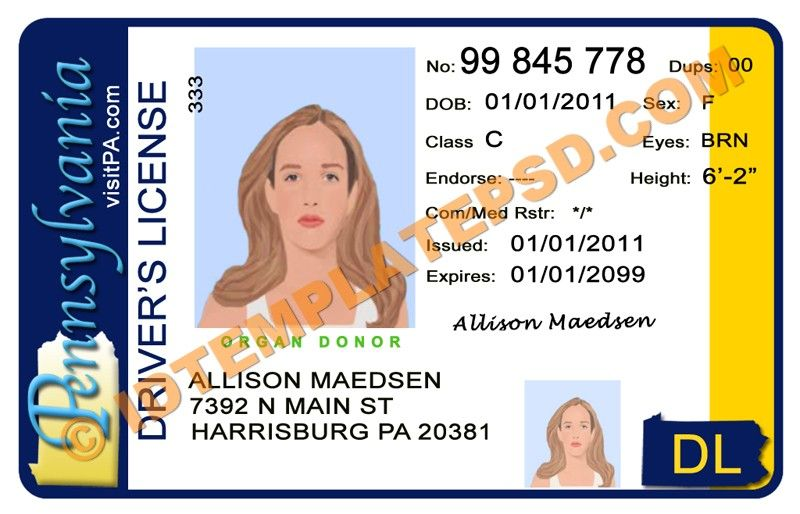 Pennsylvania License Template State Template Can Drivers You … Put usa photoshop Train… Usa Driver This Psd Is Novelty On