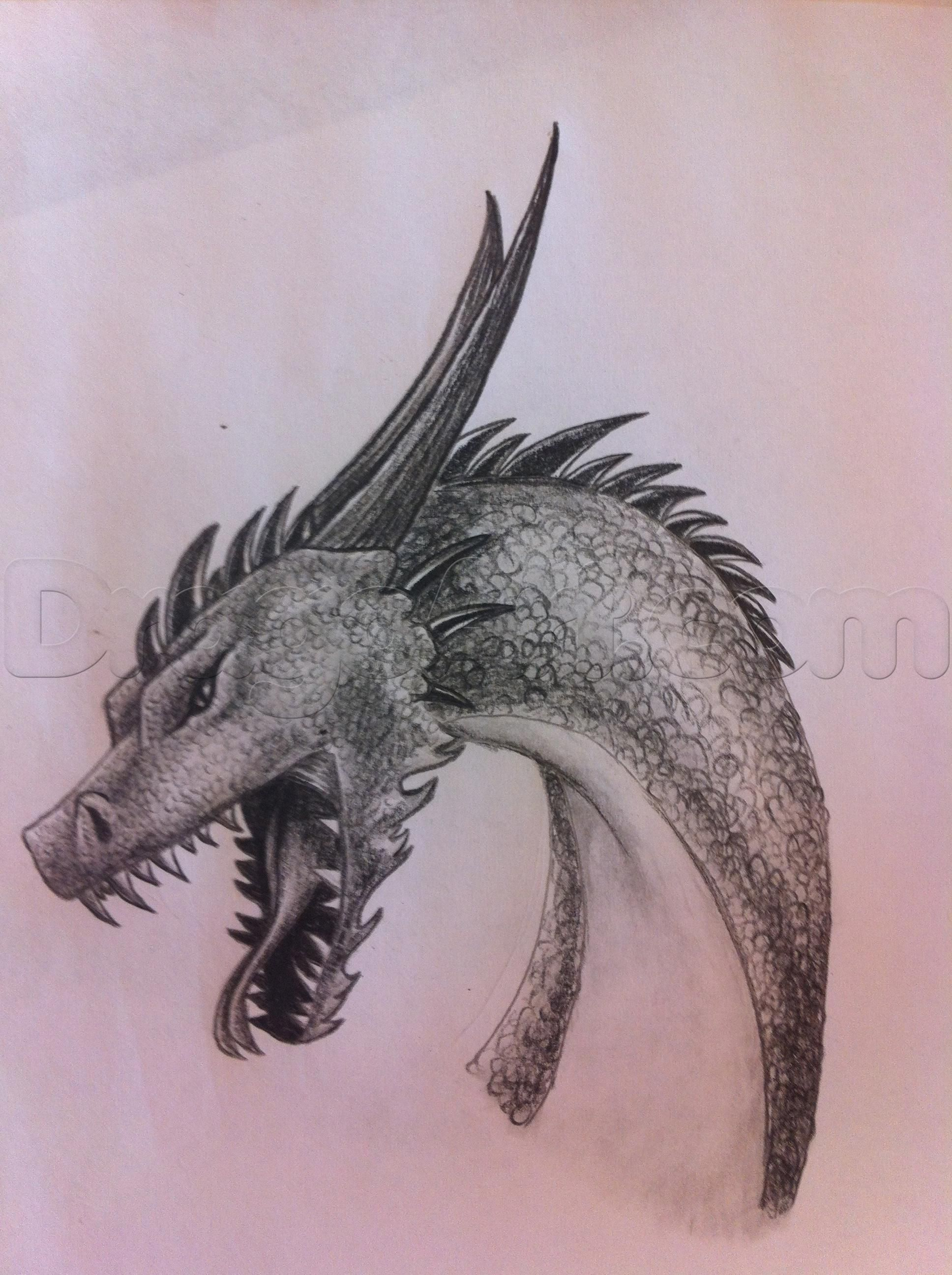 Howtodrawadragonheadstep11_1_000000029841_5g 900�857 Pixels   Drawings  Pinterest  Tattoo Ideas, How To Draw Dragons And Dragon Drawings
