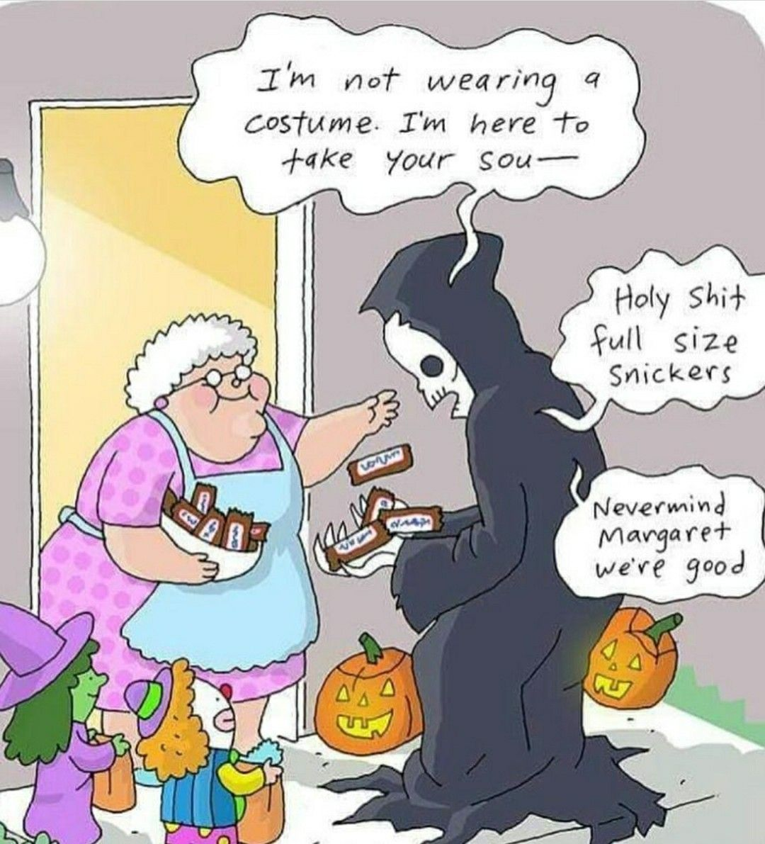 Pin by Heidi M on Autumn Halloween funny, Funny pictures