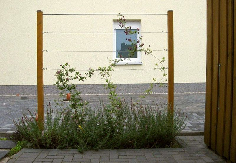 Pflanzgitter Als Sichtschutz Sichtschutz Garten Holz Gartengestaltung Sichtschutz Pflanzen