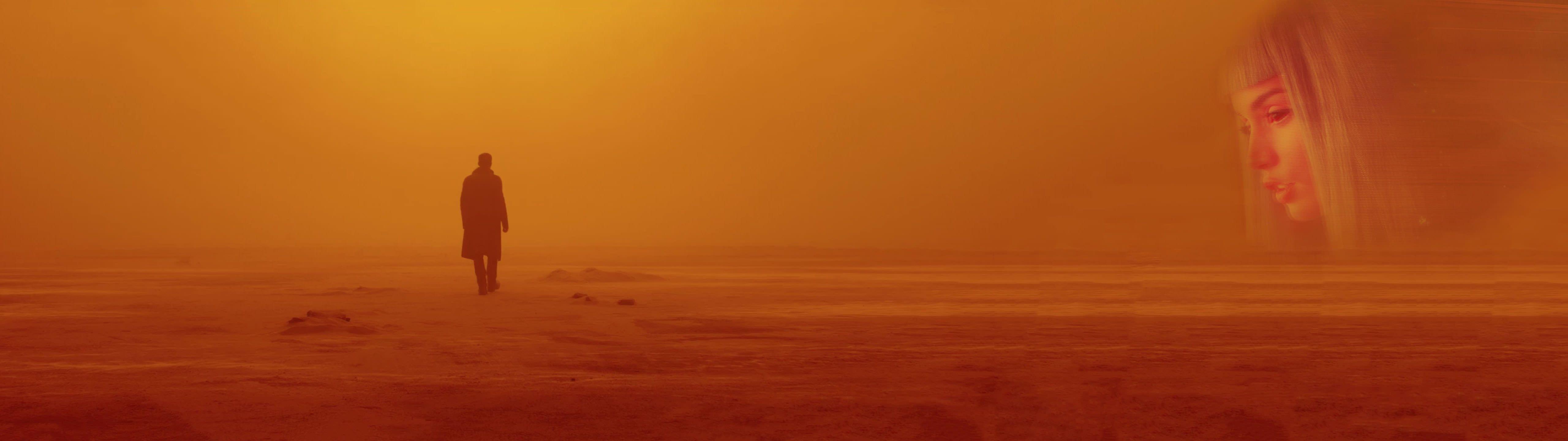 Man Standing On Open Field Digital Wallpaper Blade Runner 2049