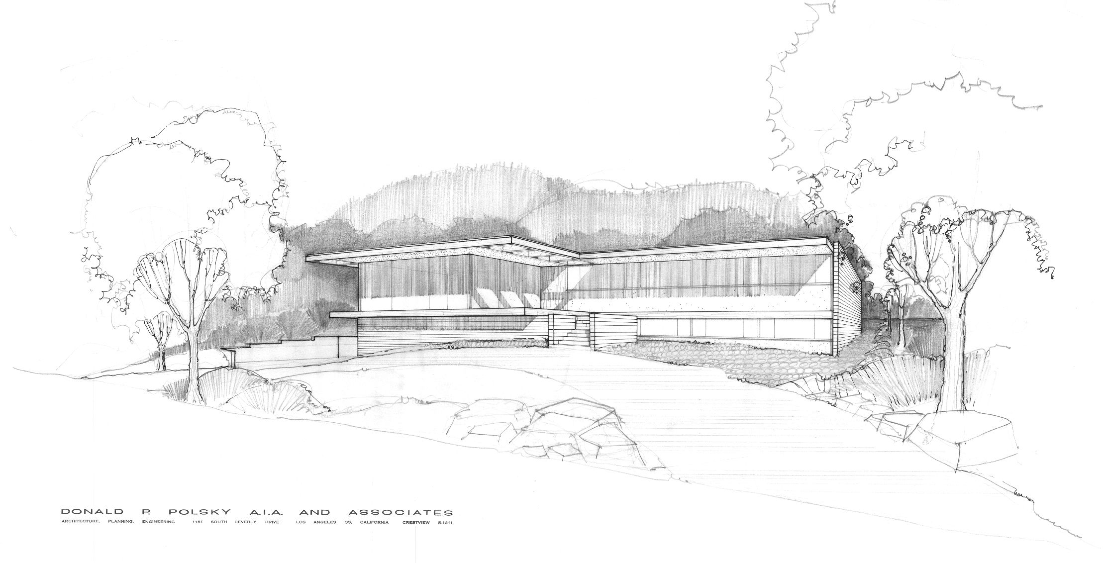 Modern mid century exterior house sketch drawing google for Home design drawing