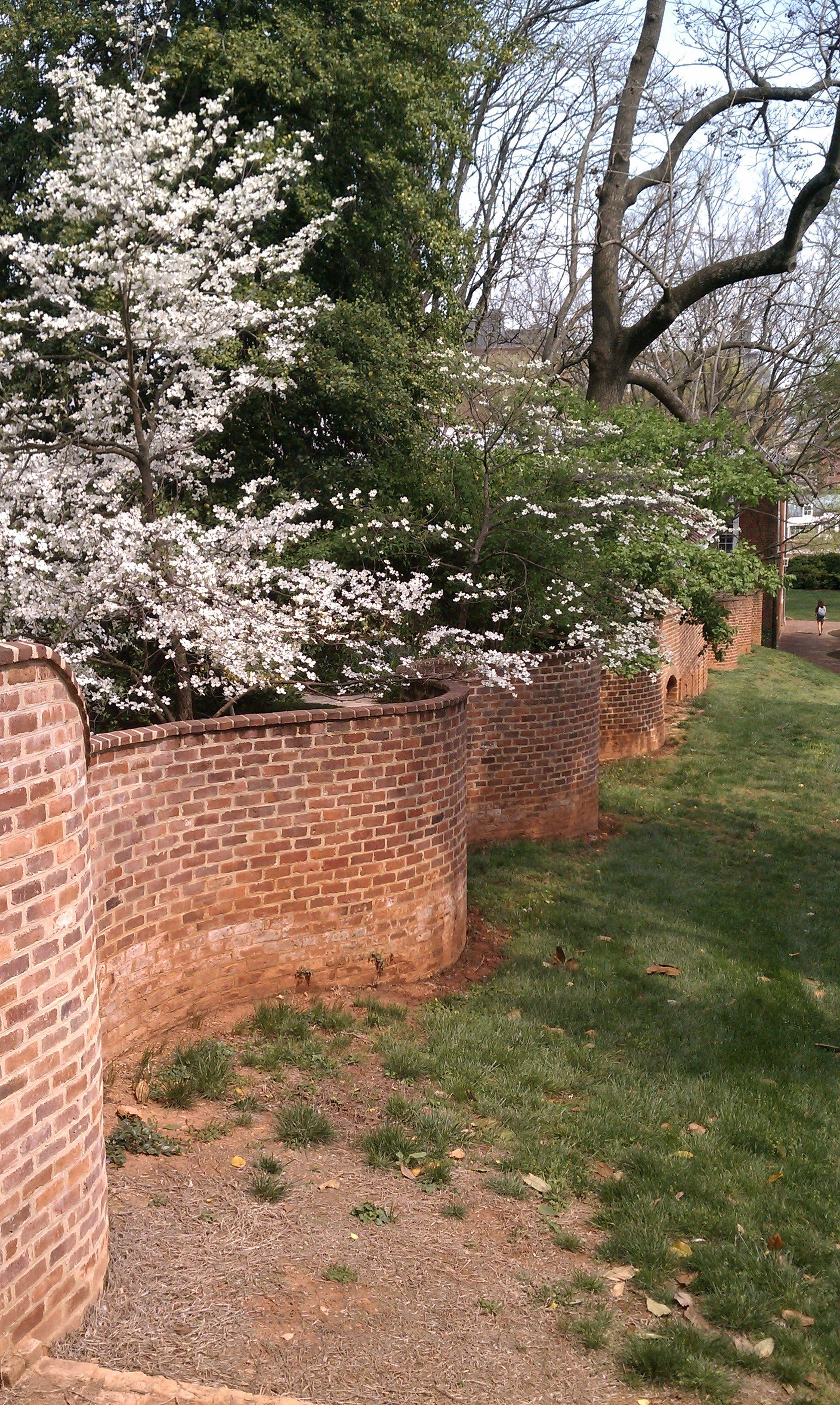 brick garden walls pictures - Google Search | Garden Walls ...