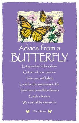 ☆ Advice From a Butterfly ~:By Ilan Shamir ☆ Famous Quotes For Success