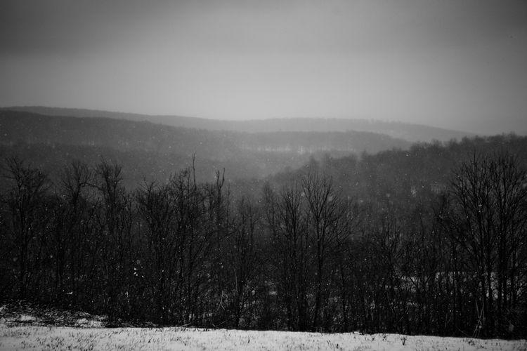 Laurel Highlands Winter
