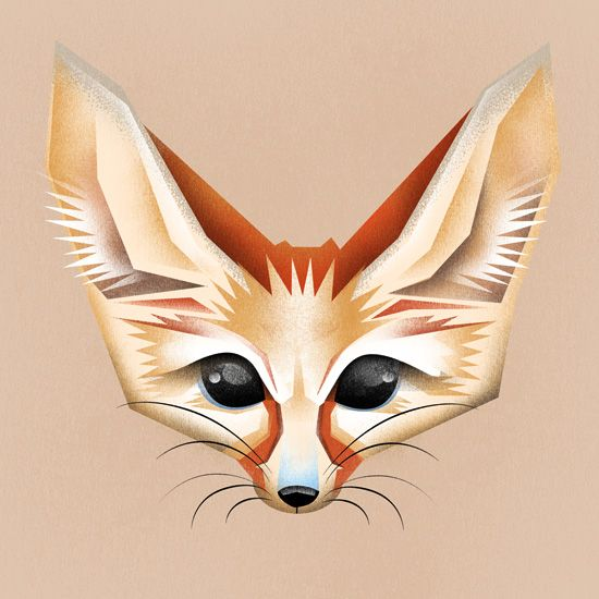 Fennec fox fox illustration monkeyworks illustration - Pagina da colorare fennec fox ...