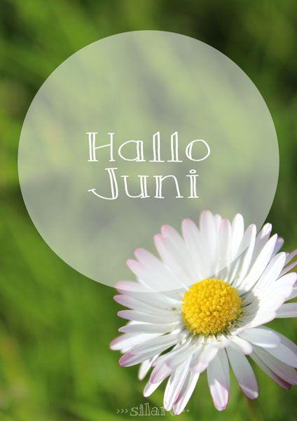 Hallo Juni #monatnovember
