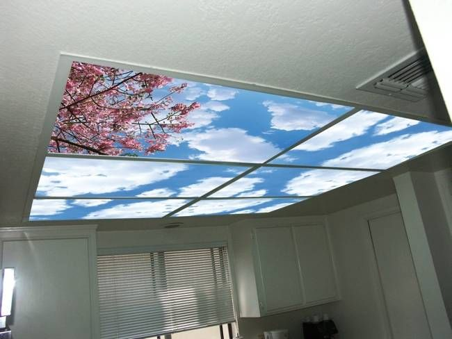 Skypanels turn your ceiling light panels into an image of the sky skypanels turn your ceiling light panels into an image of the sky 3595 home aloadofball Image collections