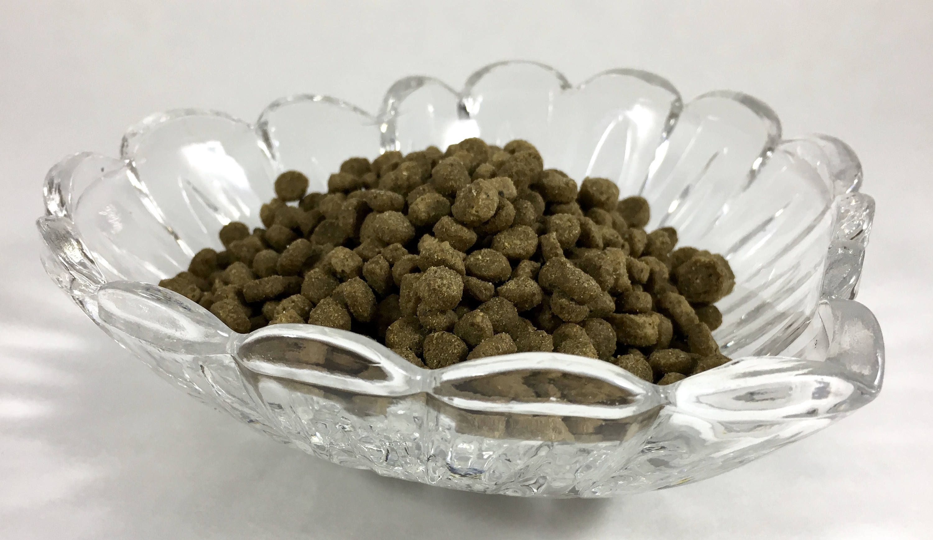 Pampered Pet Pressed Glass Heart Shaped Food Bowl Food Dish