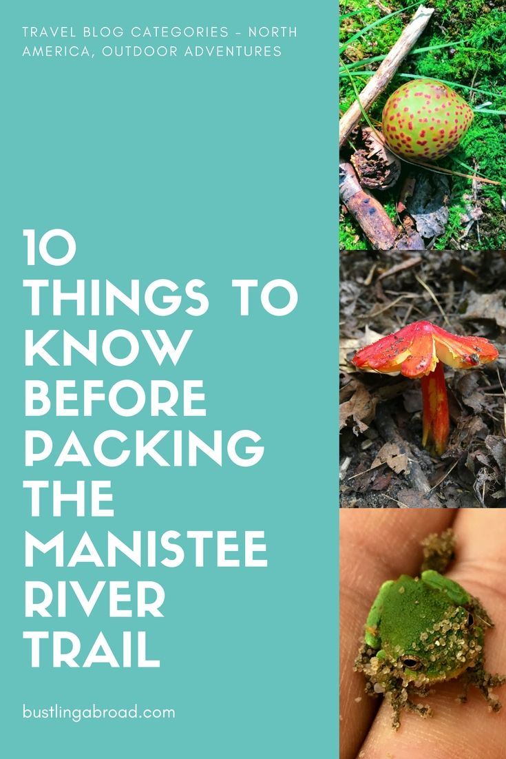 10 Things To Know Before Backpacking The Manistee River Trail Manistee River River Trail Trail