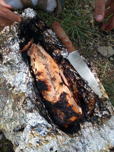 Fish &fire