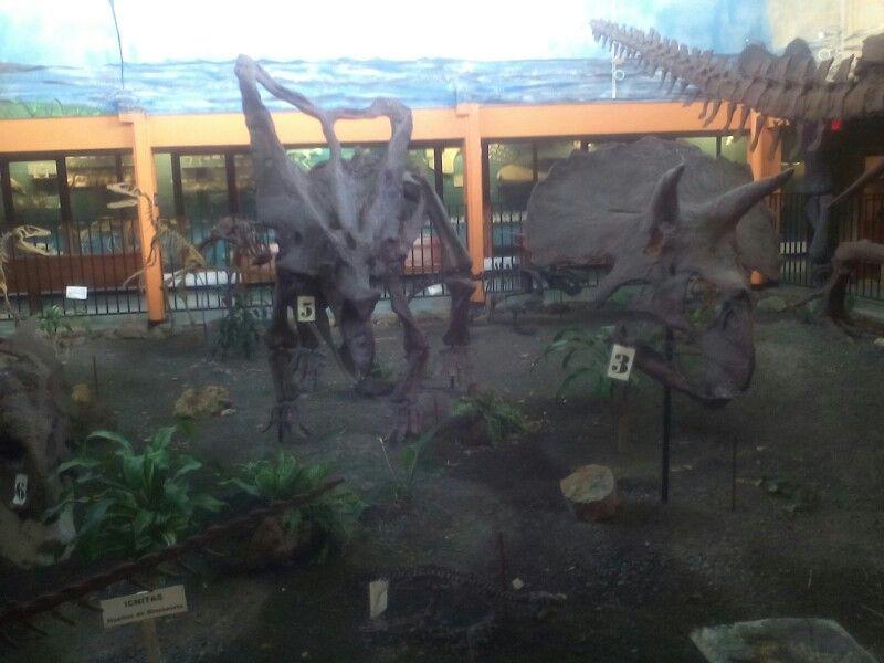 Museo La Salle en Costa Rica
