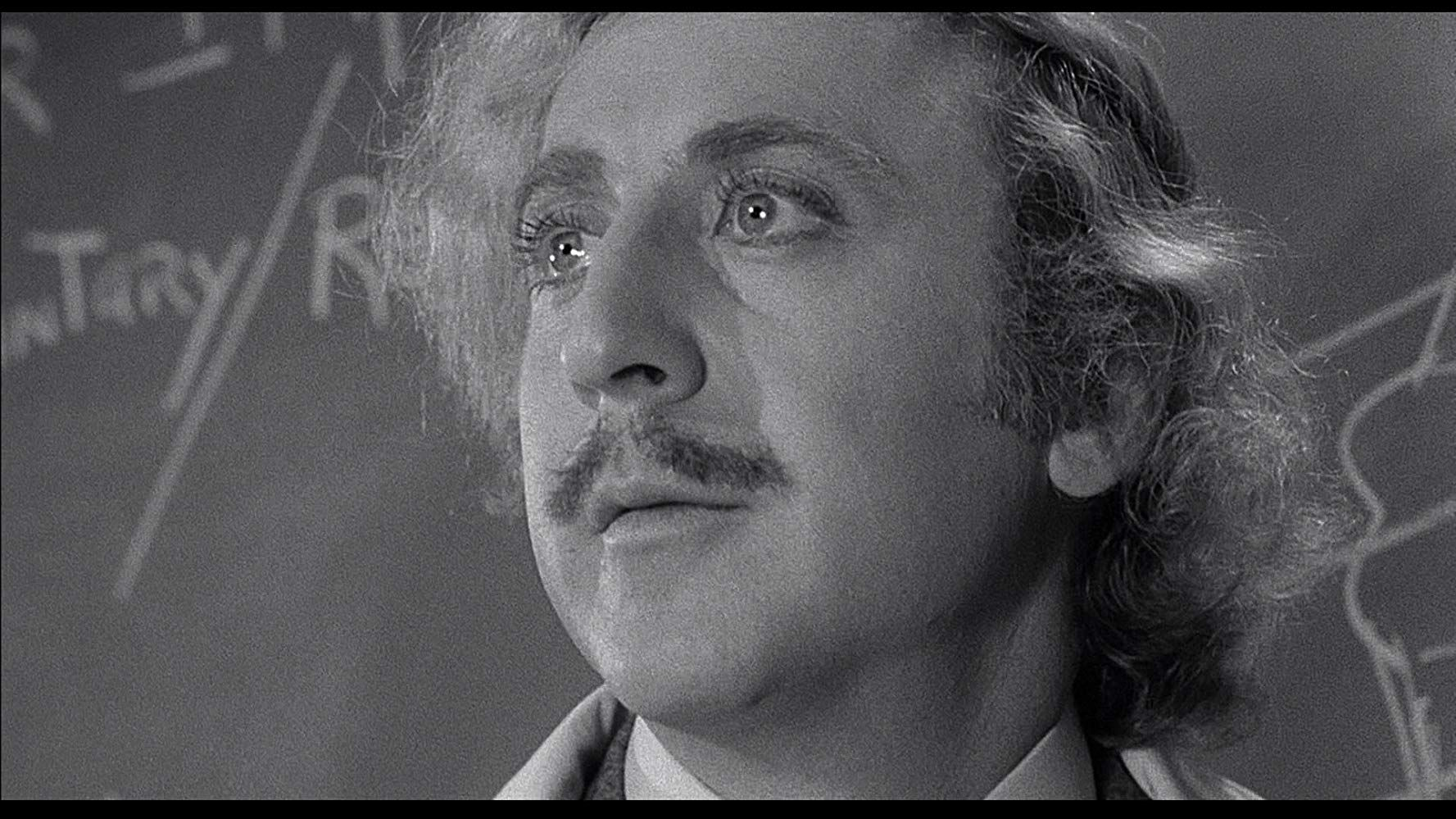 Young Frankenstein (1974) Photo Gallery IMDb Young