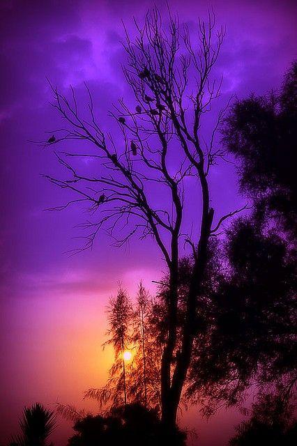 Setting Sun 2020 Gundogumlari Manzara Fotograf