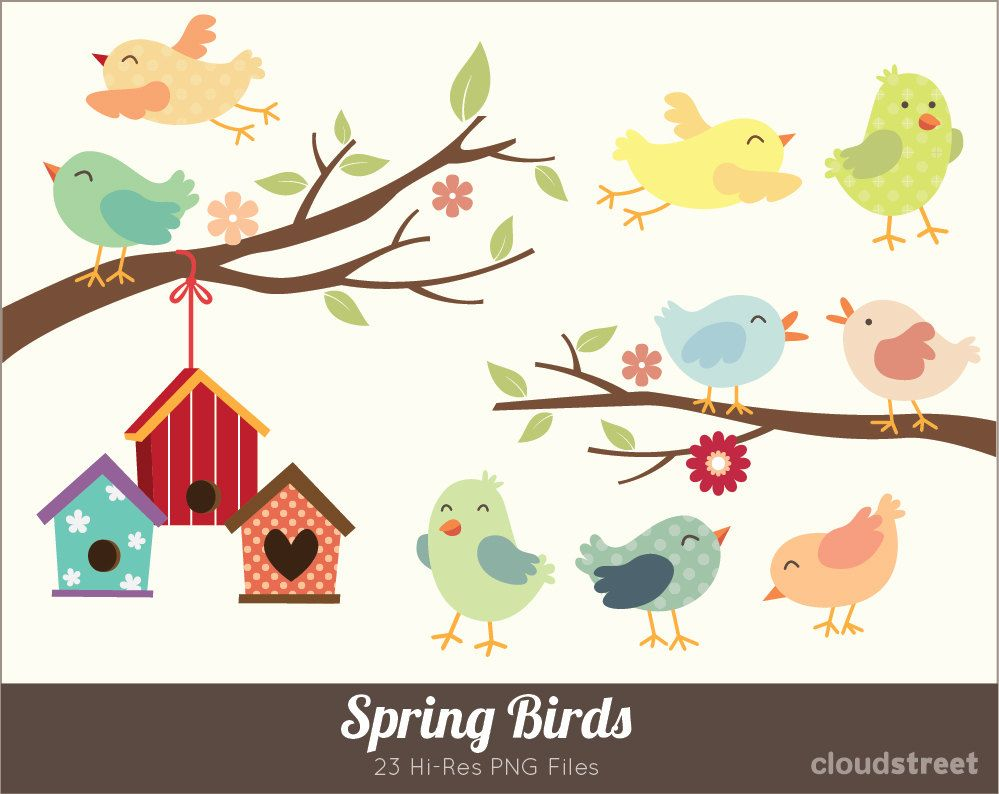 Spring Birds Clipart for personal and commercial use ( Cute birds ...