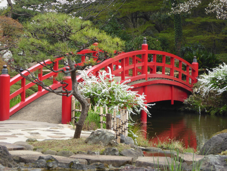 цветные фотографии красивых мостиков в парках главное