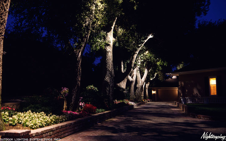 Outdoor Up Lighting For Trees Outdoor entrance lighting flames outdoor lighting 20uplighting outdoor entrance lighting flames outdoor lighting 20uplighting on tree ideas for landscape pinterest garden lighting ideas and gardens workwithnaturefo
