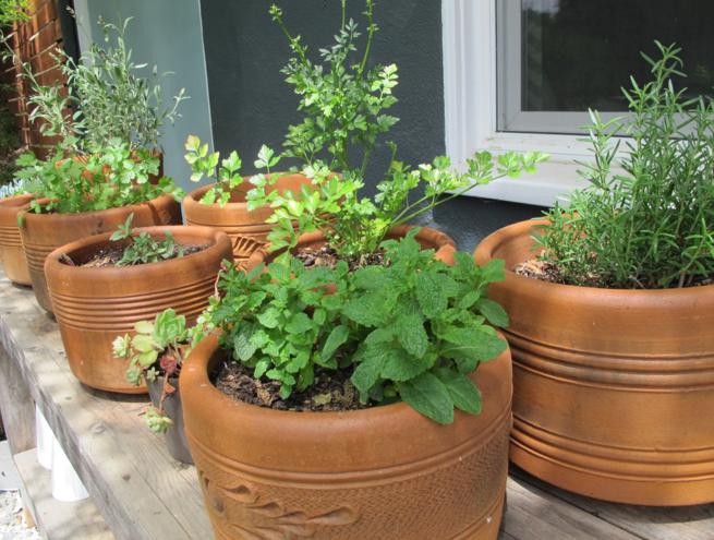Home depot flower pots | Flower Pots | Pinterest | Garden tub ...