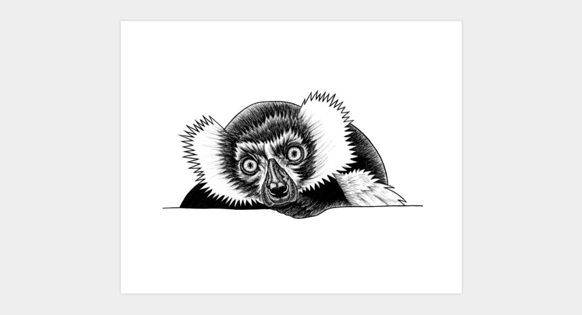 Black And White Ruffed Lemur Art Print By Lorendowding Design By