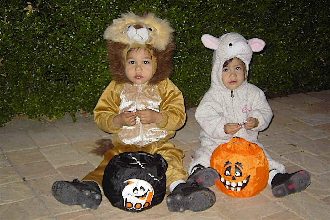 3rd Halloween-The Lion & the Lamb