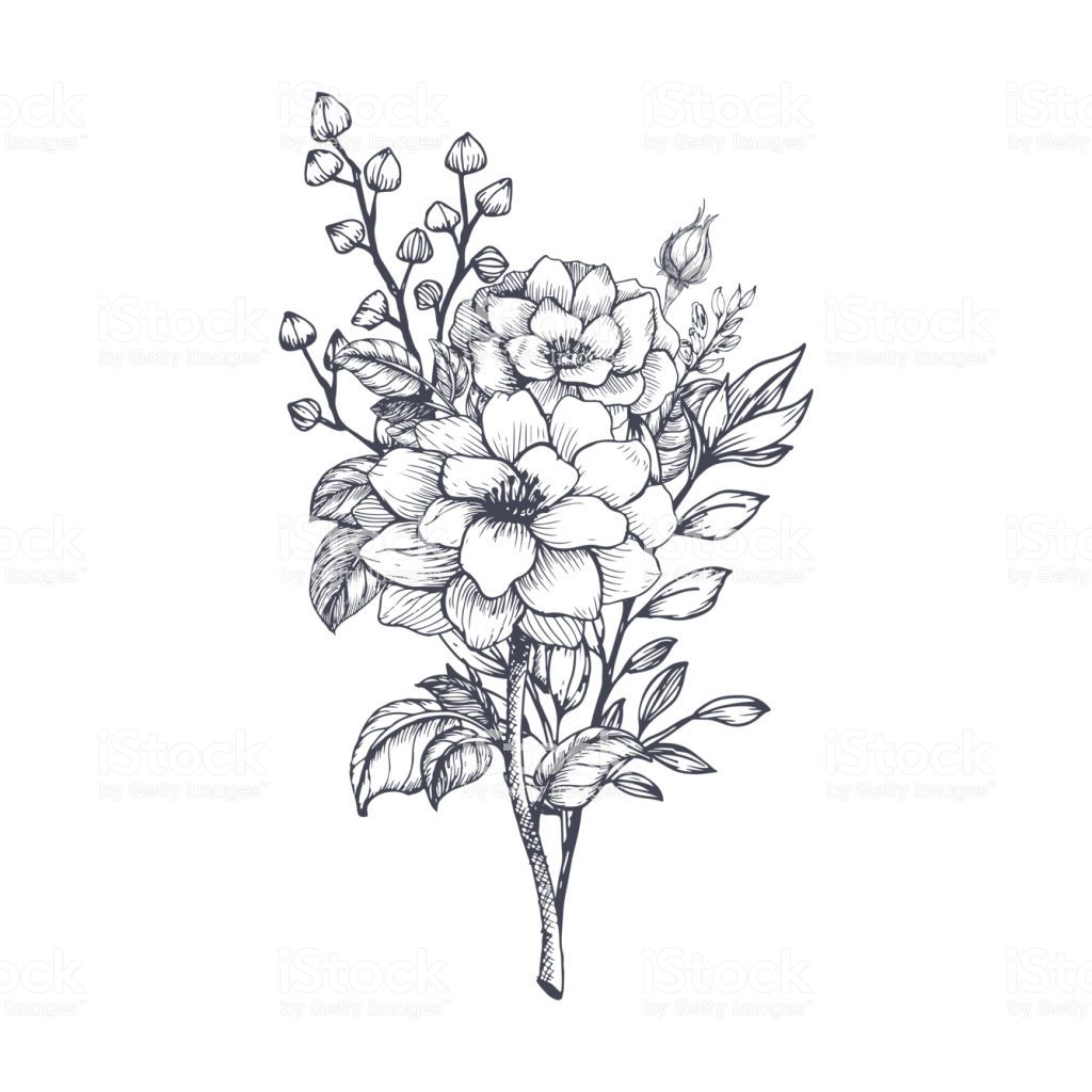 Hand drawn flower bouquet royalty free hand drawn flower bouquet stock vector art more images of flower