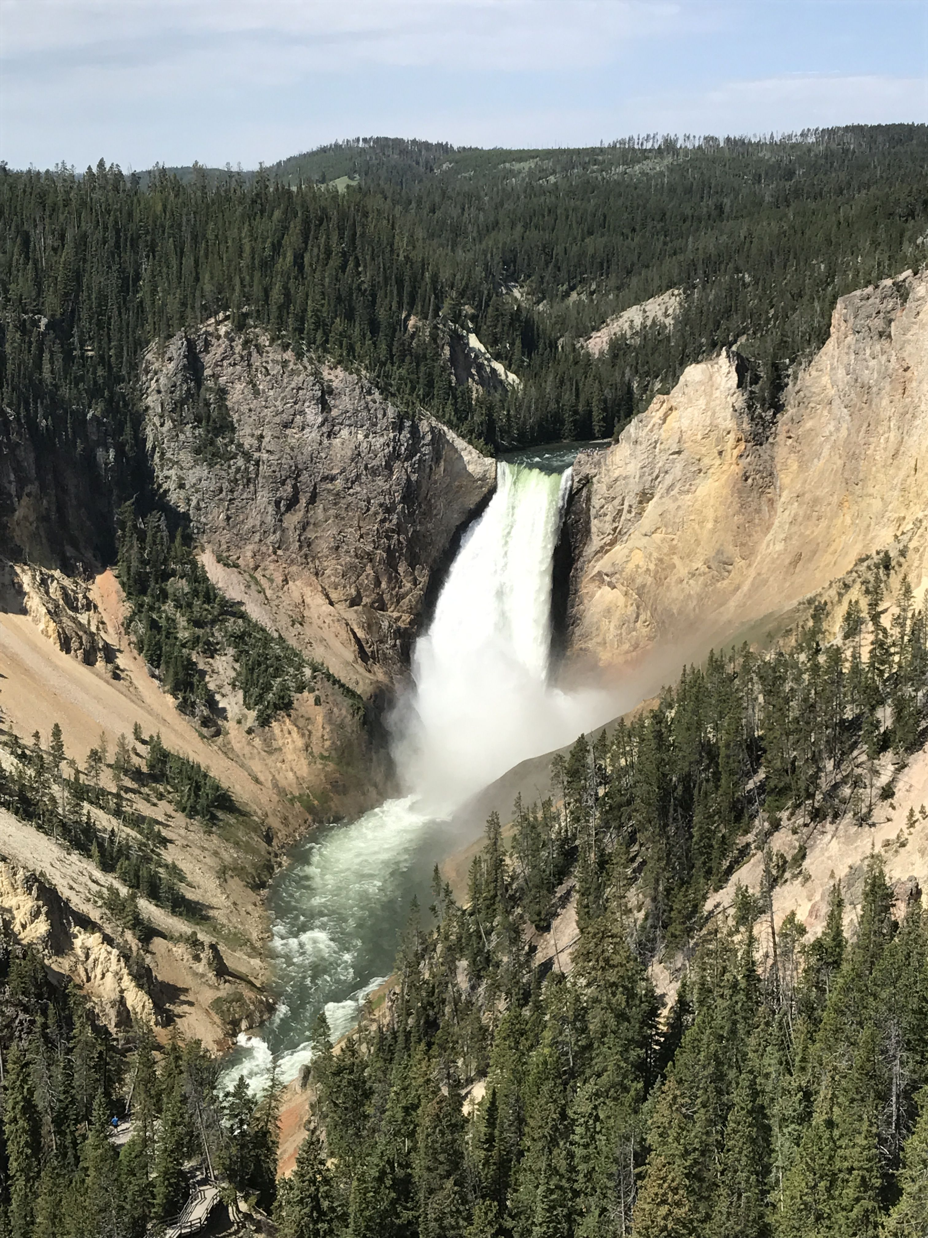 Lower Falls, Yellowstone National Park Yellowstone trip