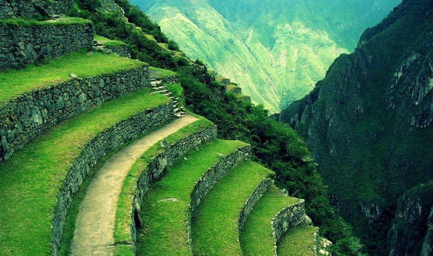 Andenes En Machu Picchu Cuzco Perú Son Bancales O