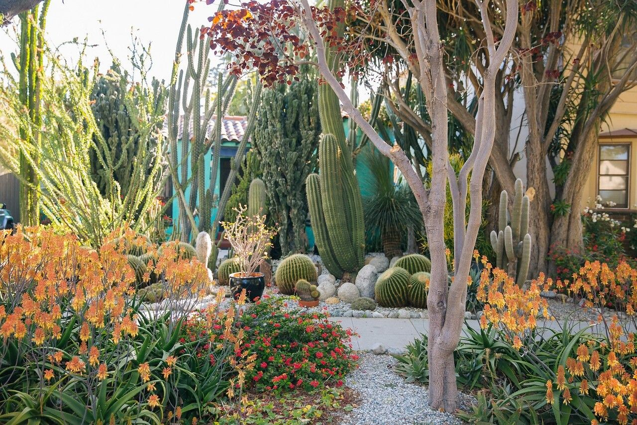 garden of Ray Valentine, Los Angeles. Photo by M.B. Maher