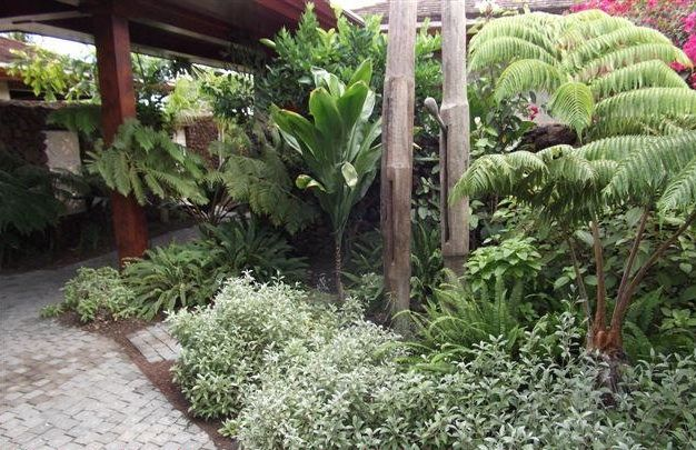 Native Hawaiian Plants Integral To Landscaping At Hualalai Resort Luxury Estate Hawaii Real Estate Market Trends Hawaii Life Hawaiian Plants Tropical Landscaping Landscaping With Rocks